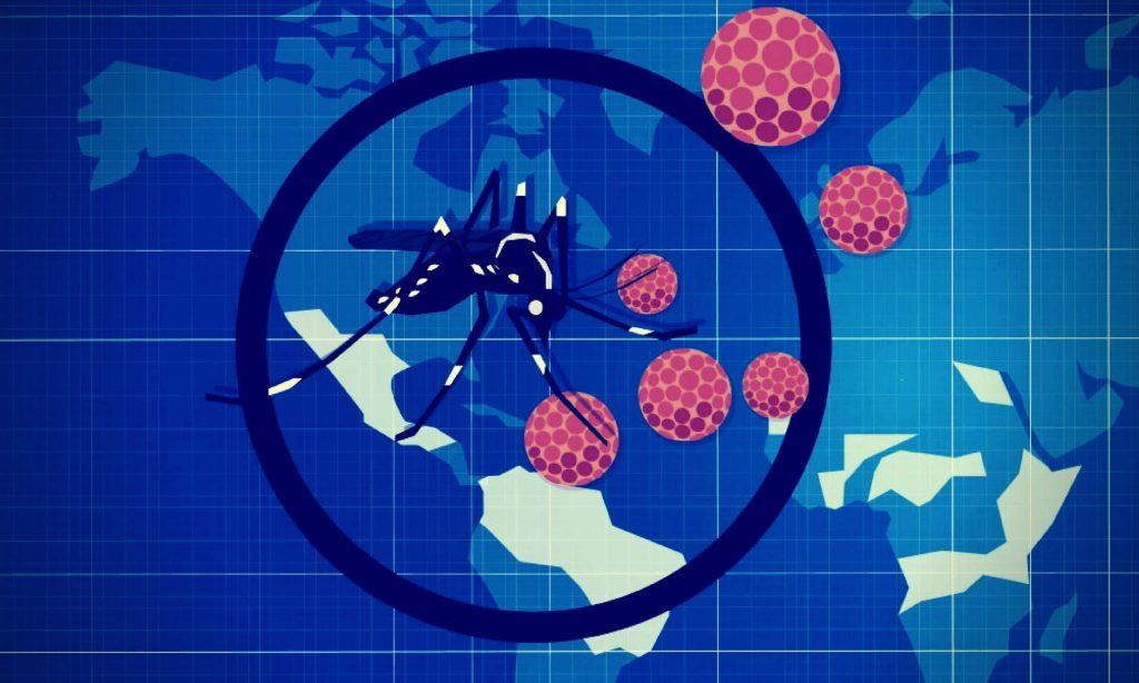 Equipamento para pegar mosquito da dengue aedes aegypti - adultrap - armadilha não caseira - armadilha segura contra mosquito da dengue